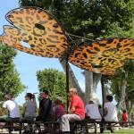 papillons-madneom-territoire-ombre-xtrem-tour-narbonne