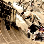module-skate-Madneom-carcasse-avion-Envie-Urbaine-Niort-2014
