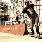 module-skate-Mdneom-glissiere-Envie-Urbaine-Niort-2014