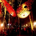 PAPILLON LEOPARD NUIT FESTIVAL LA MOTTE 2015