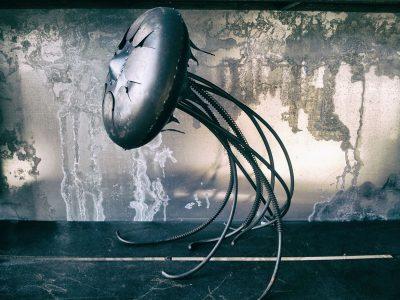 expo-marine-meduse-copie