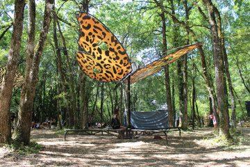 papillon-leopard-madneom-festival-de-la-motte-2016-copie
