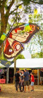 papillon automne madneom festival tribal elek 2019